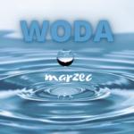 Grafika z tytułem woda-marzec.